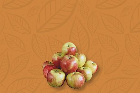 Акция на яблони Яблони 3-4 х лет 800₽